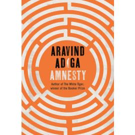 Amnesty (Aravind Adiga, Hardback, 9789389109436)