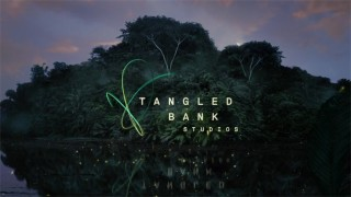 Tangled Bank - Identity