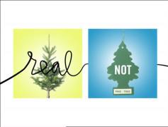 Herman Miller - Get Real