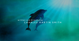 Dolphin Tale 2 - Main Title
