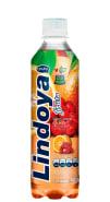 Lindoya Bebida Mista Laranja com Acerola 400ml