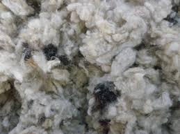 Oregon Shepherd Sheep Wool Insulation