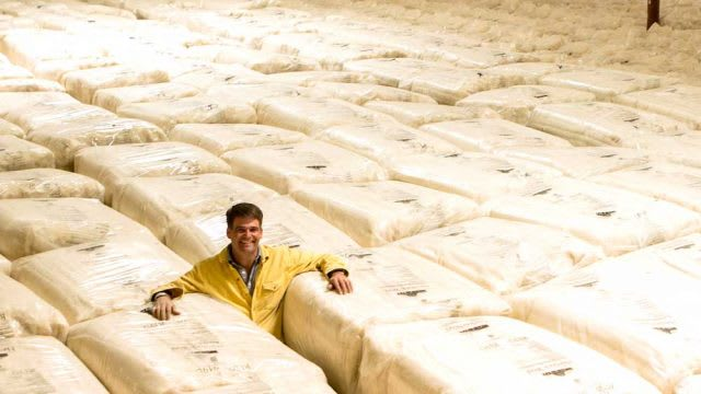 Havelock Wool Inventory is Abundant – Buy it Now!