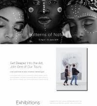 Modern Art Gallery web design