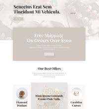 jeweller website design