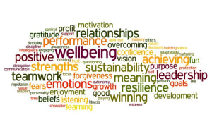 Wellbeing training
