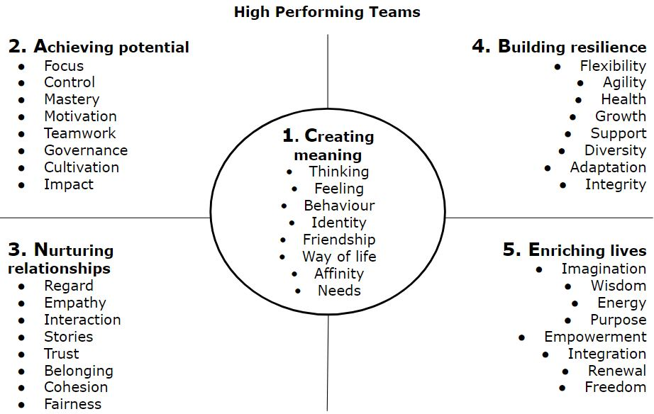 The CANBE Wellbeing Model applied to team performance
