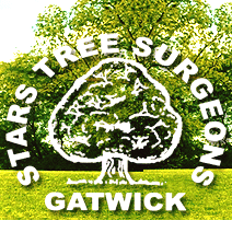 Stars Tree Surgeon - Tree Surgeons in Crawley Logo
