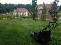 Garden / Property Maintenance