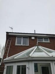 Main photos of TJ Roofing & Painting Services