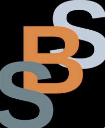 Specialist boiler services logo