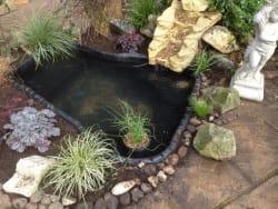 Main photos of Garden Services