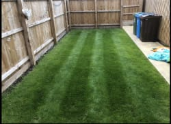 Lawn Treatment and Mowing