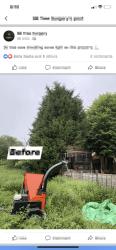 Main photos of SB Tree Care