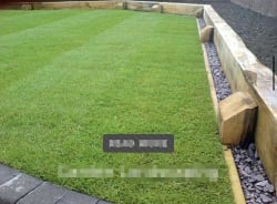 Landscape turfing and fencing