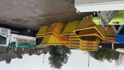 Skip hire and waste clearance