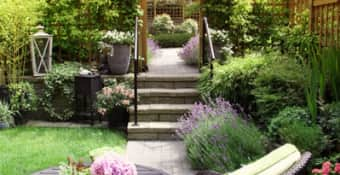 Request Garden maintenance and upkeep quote