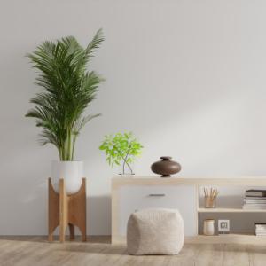 plantas-interior-decorar