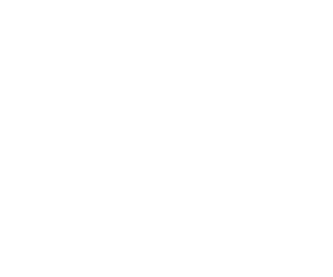 Goodman Fielder logo in white