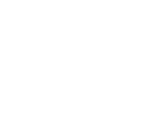 Disability Sports logo