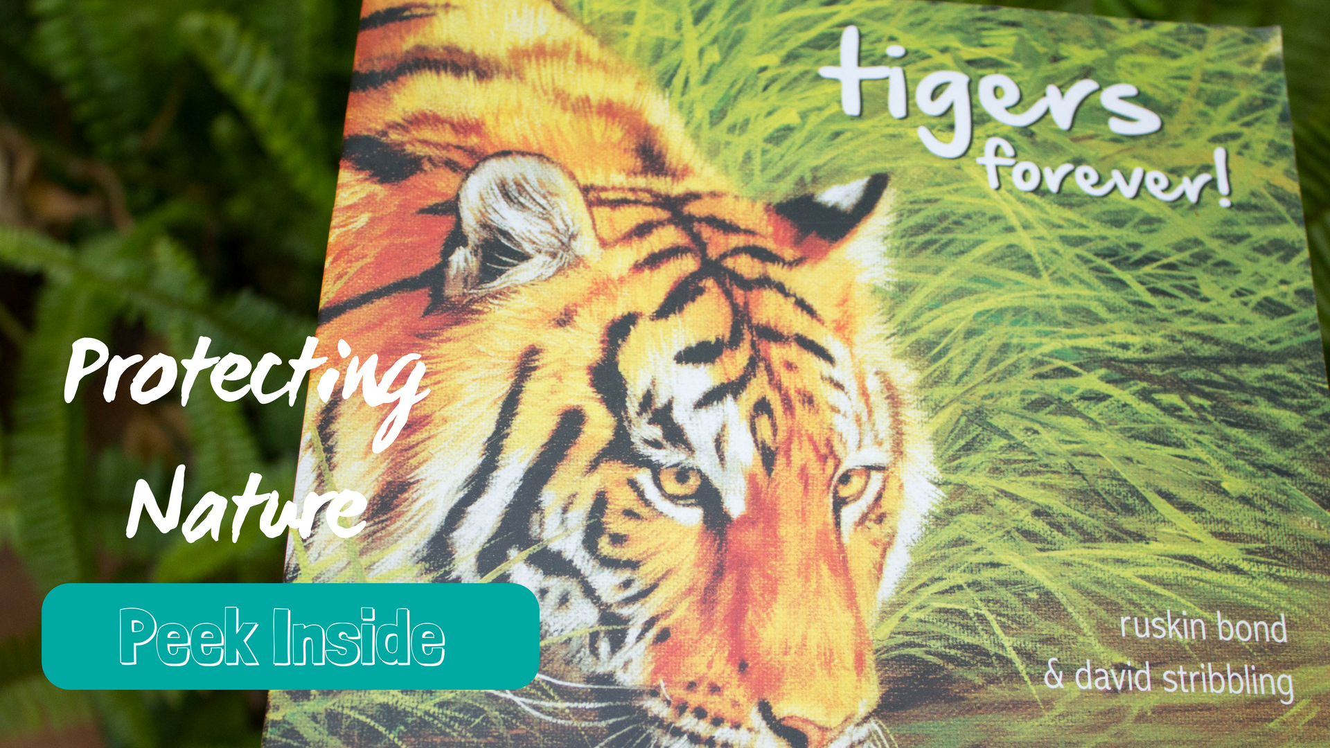 tiger conservation for preschoolers