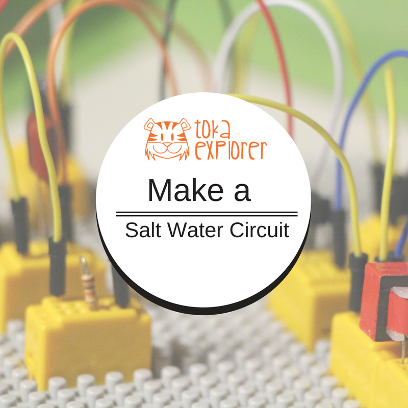 Kids Explore Simple Circuits - Make a Salt Water Circuit
