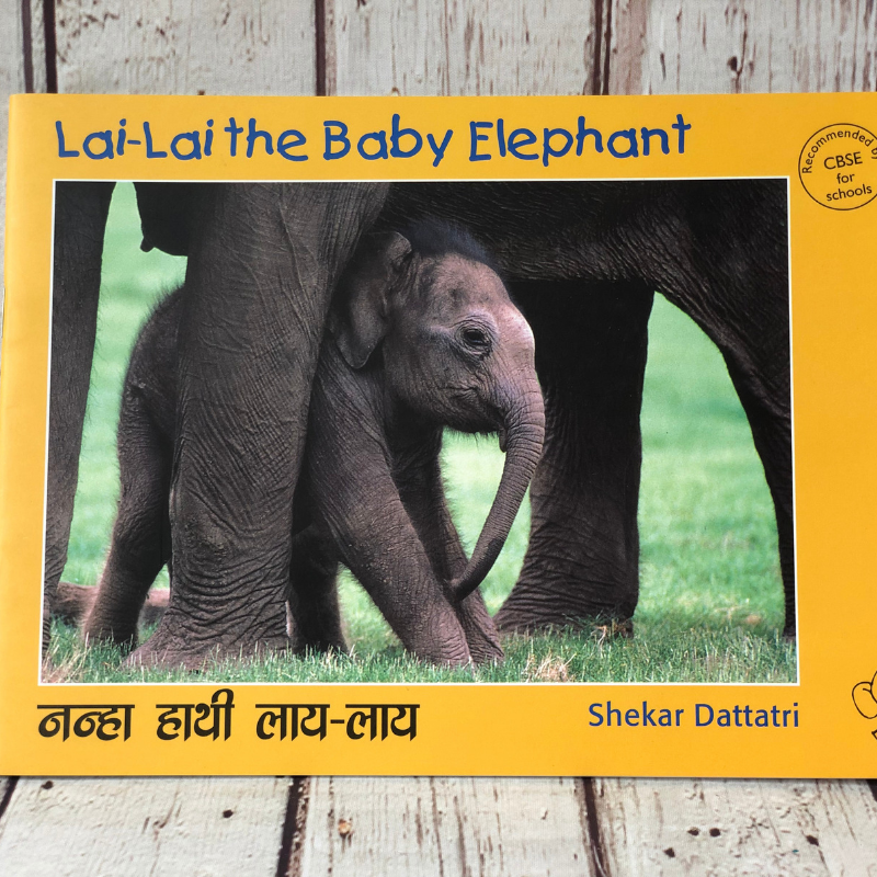 Lai-Lai The Baby Elephant