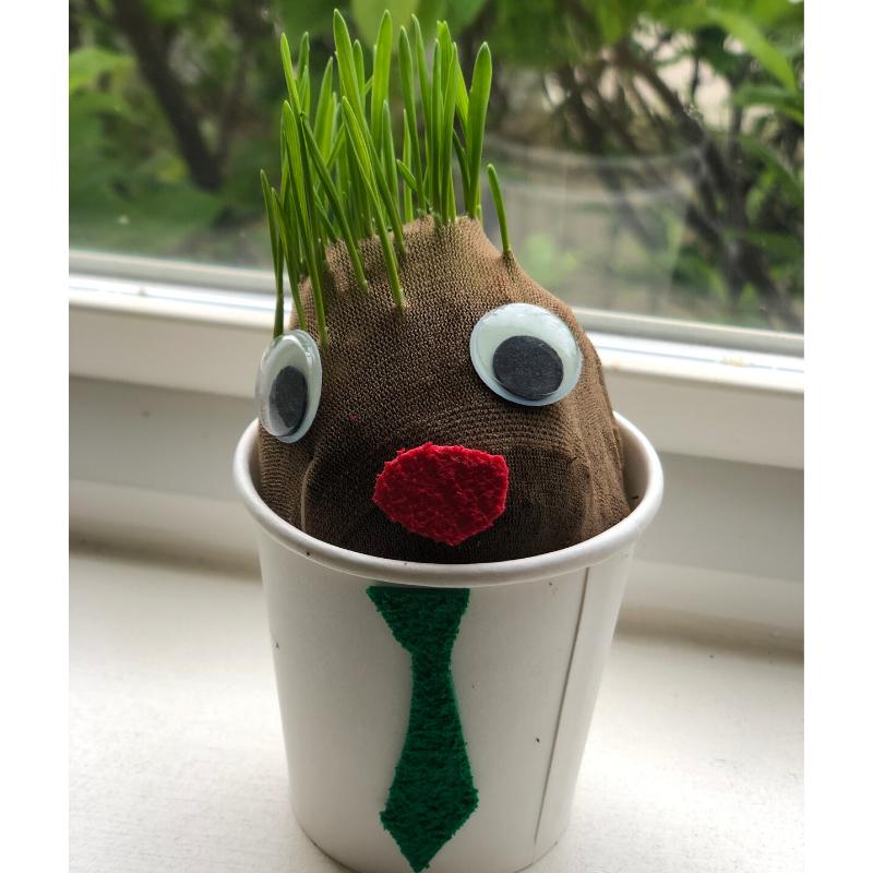 Grow a Grass Head this Spring!