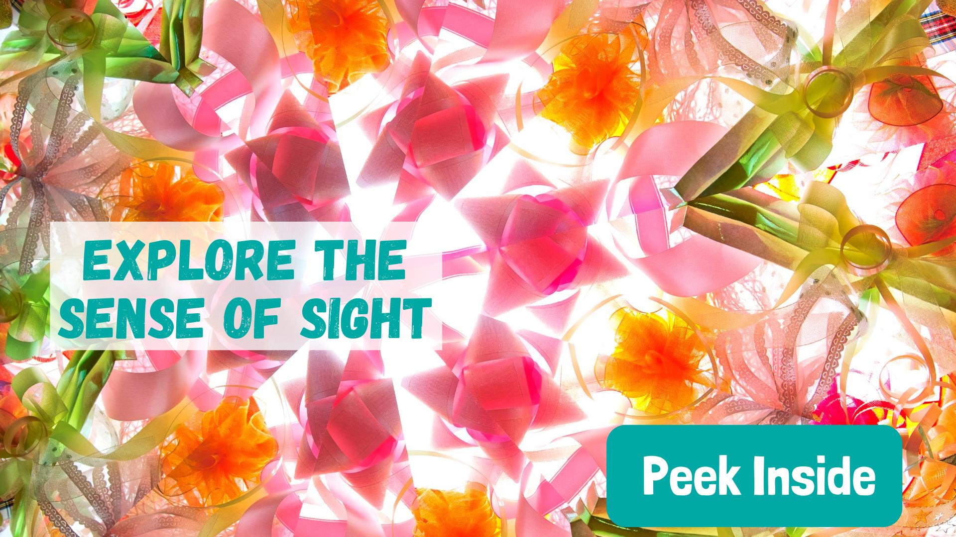 Explore the sense of sight for preschoolers
