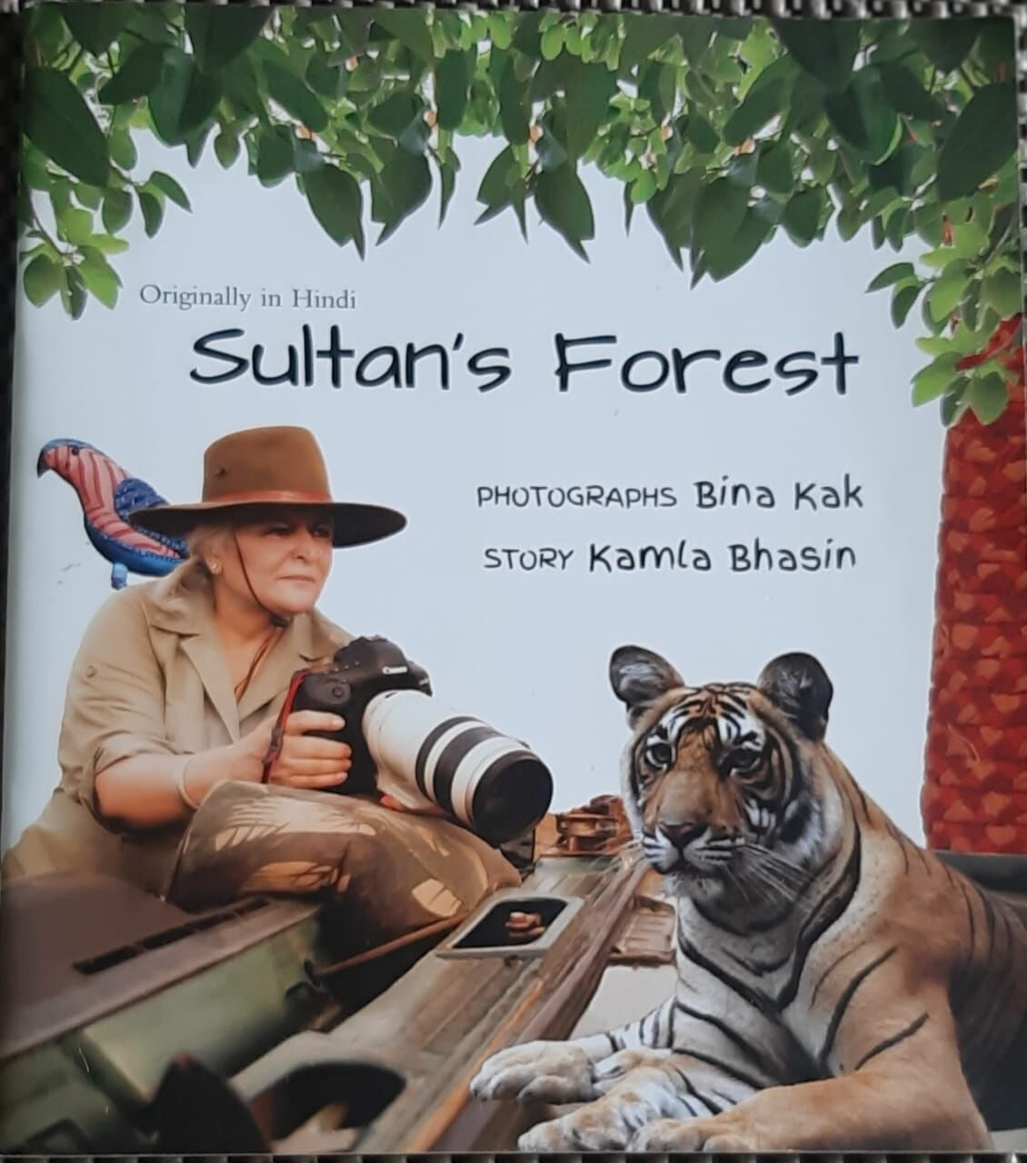 Sultans Forest - Visual-Spatial thinking for children