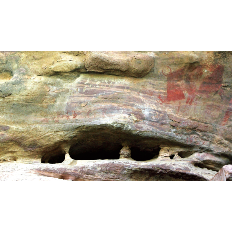 Cave Art - The First Paintings