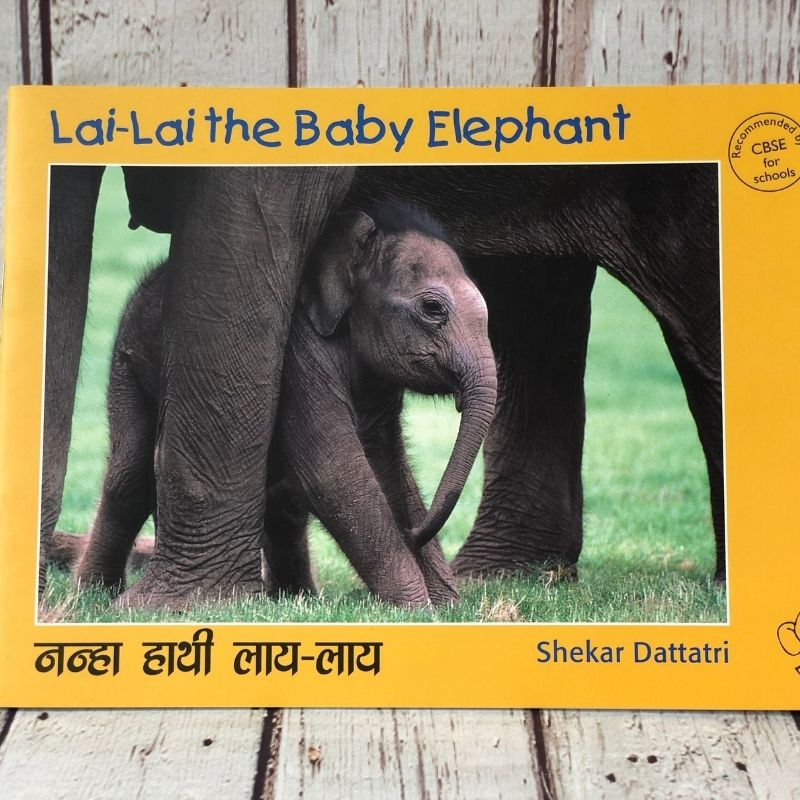 Lai Lai The Baby Elephant