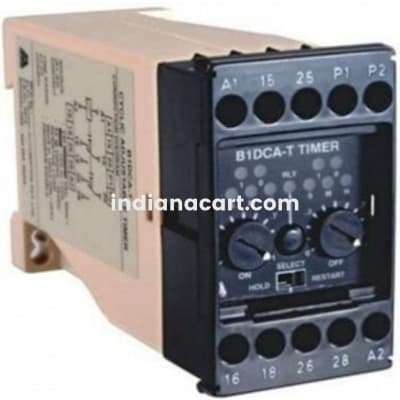 B1DF, ON Delay Timer with instant contact 110V AC