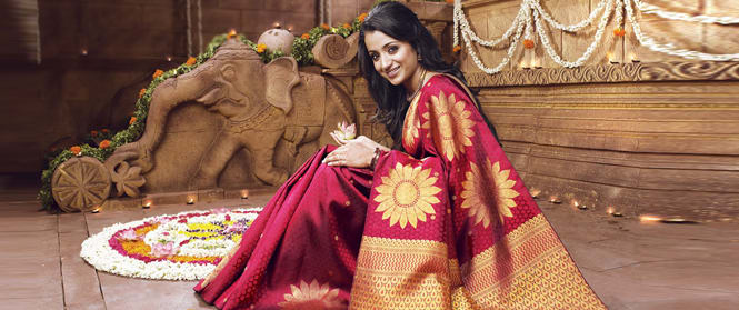 Saree- An Example Of Awesomeness