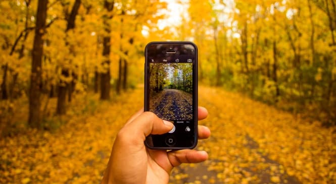 Ways to Boost Your Smartphone Photography