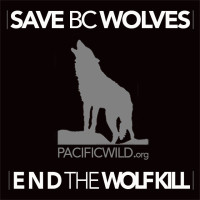 CLICK HERE to support Save B.C. Wolves
