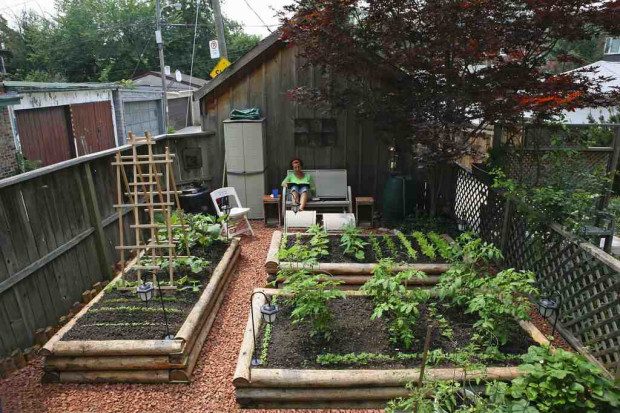 Urban Backyard Farmer : The Backyard Urban Farm Companys Pop Up Garden Shop and Greenhouse