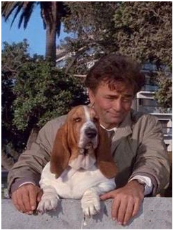 "The Plan – ""Columbo"" tells all"