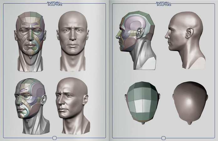 Head & Neck Anatomy: A Book With Augmented Reality | Indiegogo