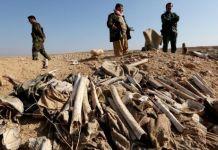 Irak Pariksa Pajaratan Massal Wargi Yazidi Disangka Korban Pembantaian ISIS