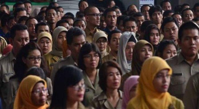 Aya Jalur Husus CPNS 2018 Minat