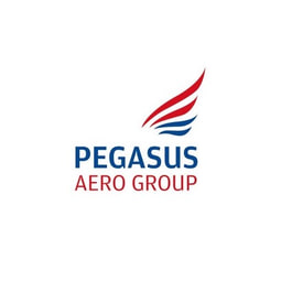 pegasus aero group