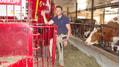 Fam. Kälin aus Wollerau füttert Ihre Kühe mit einem betriebsspezifischen LG RIGI Mischfutter.