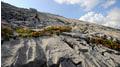 Entdecken Sie die faszinierende UNESCO Biosphäre Entlebuch