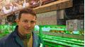 Hühnerkot trocknen reduziert Ammoniak-Emissionen