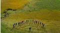 Alphornkurs in der UNESCO Biosphäre Entlebuch