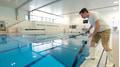 Kernkompetenzen eines Badmeisters