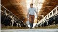Trockene und hygienische Stallböden für ein gutes Stallklima