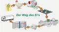 Vom Huhn bis zum Stapel: Messbare Verbesserungen mit Gregg