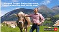 Guido Bucheli erzählt: Darum züchte ich Braunvieh